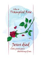 The Trampled Rose by christians