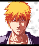 Bleach | The revealed of the truth by Akira-12