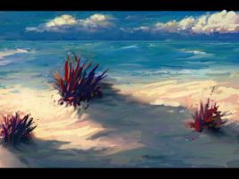 beach by Maxiway