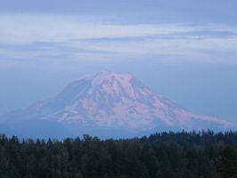 Mount Rainier, Pretty in Pink by doglover43