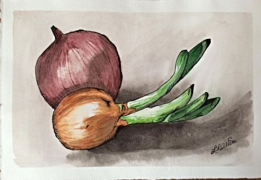 Two Onions by lalynn23