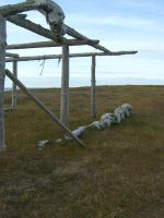 Drying rack 2 by Arctic-Stock