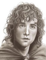 Peregrin Took by bronze-dragonrider