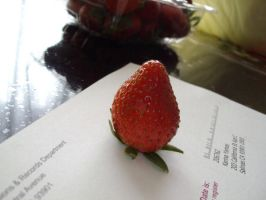 strawberry by milozilla