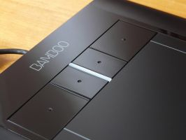 Wacom Bamboo by brightstyle