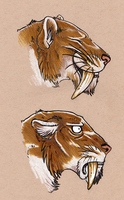 Smilodon by Battlehog
