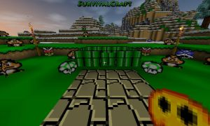 Survivalcraft 2014-11-26 20-55-26 by TheAllMightyPanda14