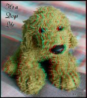 It's a Dogs Life 3D anaglyph version by zippy6234