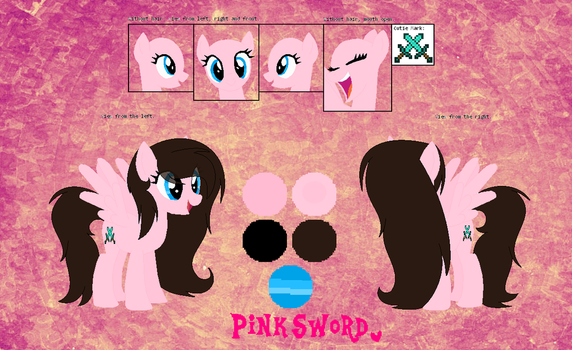 Another Update Of Pink Sword Reference Sheet by AmyTheUnicorn11