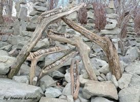 Stone and driftwood composition in Hungary bykanya by tom-tom1969