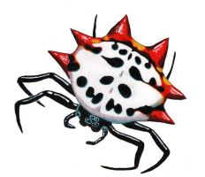 Spiny Orb Weaver by NocturnalSea