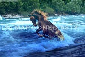 Into the water PREMADE by themarooni