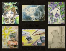 Middle School ATCs by Wolftrest