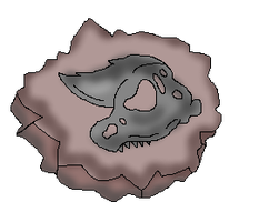 Crested Skull Fossil (CoC Fossil) by Dianamond