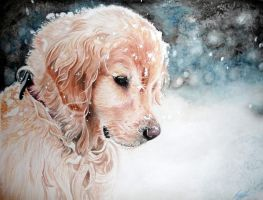 Golden Retriever Puppy by xXSahara96Xx