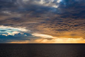 Rays Of Gold by CalleHoglund