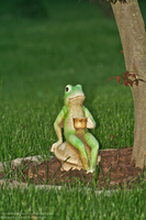 Mr. Frog by The--Working-Wulf
