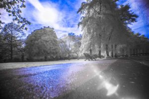 Learning Infrared Photography by TomasMascinskas