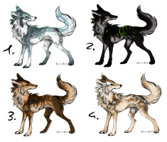 Canine adopts by BlackLightning95
