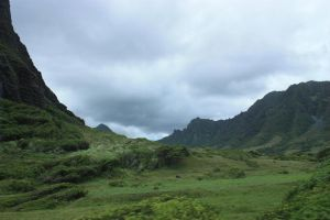 Jurassic valley by CAStock