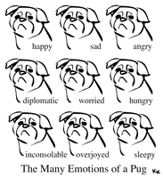 Pug Emotions by kayjkay