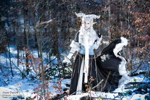 Snowdemon - In The Forest by RomaiLee