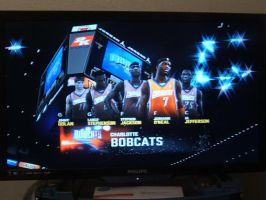 Charlette bobcats NBA2K11 starting 5 by werewolf85
