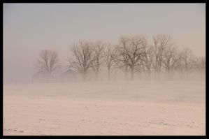Mystic Morning Frozen Fog by MikeysPhotos
