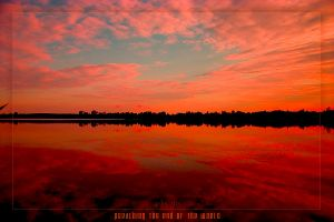 preaching the end of the world by werol
