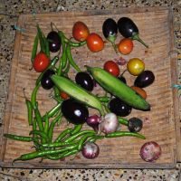 all r vegetables by anupamas
