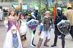 Otakon 2014 - Twilight Princess(PS) 02 by VideoGameStupid