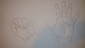 Hand's lines by nSav