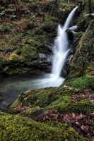 Dolgoch Waterfall 4 by CharmingPhotography