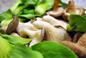 Sea of Greens and Mushrooms by fosspathei