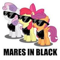 Mares In Black by zerana1