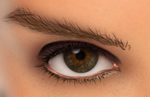 Eye and Brow Detail by BKrootz