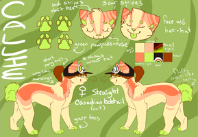 Callie reference sheet by coffaefox