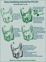 Shading Tutorial for PS CS5 by BirdsFeather