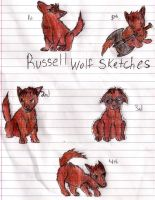 Russell Wolf Sketches Colored by FlamingStars