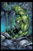 Hulk page  D Keown and N Lee O Remalante color by spidey0318