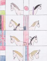 Hetalia Horses by blackstormwarrior