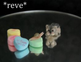 Handmade Miniature Sculpture Yorkie Pup and Snail by ReveMiniatures