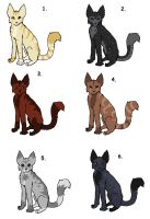 Feral Cat Adoptables by Addictivemind