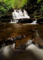 Ricketts Glen State Park by Brettc