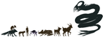 Rough Yorshov creatures size chart by ToothlessEgo