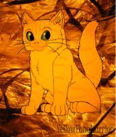Warriors Cats 01: Firestar by YellowFangWarrior