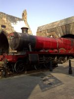 The Hogwarts Express by ToxicSerpent