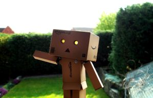 Danbo Braving the World by jaladams