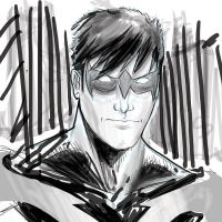 nightwing dome by GIO2286
