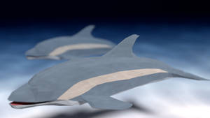 Dolphins by Tohmis